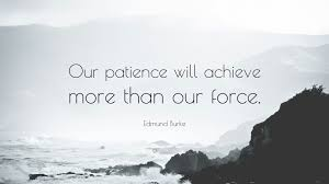 Edmund Burke Quote Our Patience Will Achieve More Than Our Force