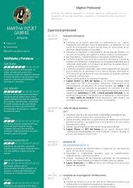 Administrador Resume Samples Templates Visualcv