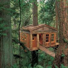 Best Treehouse Hotels In The World  ThrillistCoolest Tree Houses