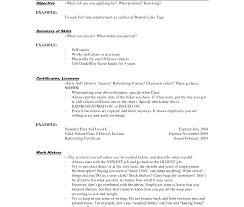 Fine Courtesy Clerk Objective Images Example Resume And Template