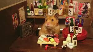 Ginji si Bartender