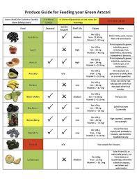 Cockatiel Diet Chart Parrot Diet Chart Google Search Diet Chart Diet Parrot