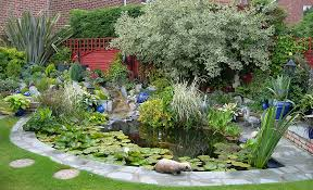 Small Picture Pond Design Warwickshire Swimming Ponds Staffordshire Pond