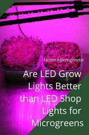 Grow Lights Massachusetts Are Led Grow Lights Better Than Led Shop Lights For Microgreens