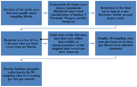 Mosquito Classification Chart Chart Showing The Mosquito Sampling Strategy Download