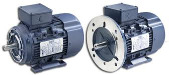 leeson® electric pioneer in energy efficient motors motors