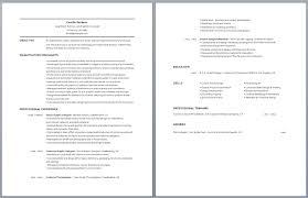 Esthetician Resume Unique Esthetician Resume Sample Resume Badak