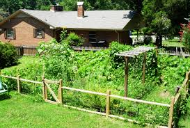 Small Picture Vegetables Garden Fence Cheaps Vegetable Garden Fence Ideas Tips