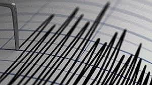 Enter a year from 1900 to 2021. Earthquake Of 6 3 Magnitude Hits Tajikistan Tremors Felt In Parts Of Delhi Punjab Jammu And Kashmir India News Firstpost