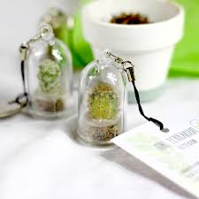 personalised and unusual eco friendly garden gifts green gift monster uk