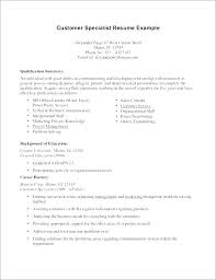 Good Summary For Resume Unique Good Resume Examples Thiswritelife