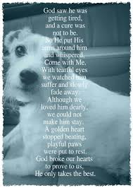 dog dying poems