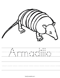 Small Picture Armadillo Worksheet Twisty Noodle