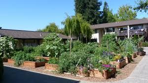 Kitchen Gardeners International Download Firstrate Apartment Gardens Teabjcom