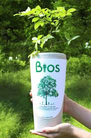 top ideas about life after death peace of mind biodegradable urn gives you life after death by growing a tree your