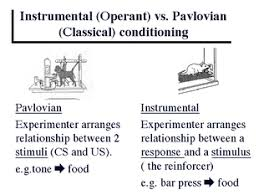 Example Of Classical Conditioning 16 20 Intro To Psychology Portfolio Shania Walker