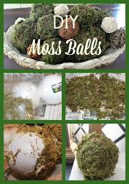 Decorating With Moss Balls DIY Moss Balls for Spring Decor New House New Home 15