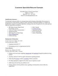 Professional Summary Resume Examples Customer Service | resume ...