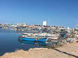 تونس - مهاجر نيوز