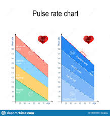 Heart And Pulse Rate Chart Pulse Rate Chart For Healthy Lifestyle Maximum Heart Rate