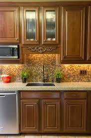 Dark Stained Kitchen Cabinets Staining Oak Kitchen Cabinets Lighter