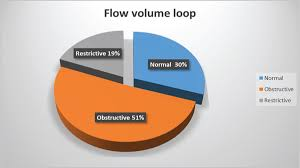 Flow Volume Chart View Image