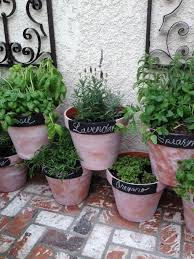 Small Picture Top 25 best Potted herb gardens ideas on Pinterest Strawberry