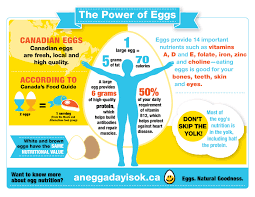 Egg Nutrition Egg Calories Nutritional Content Of Eggs