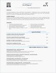Professional Summary For A Resume Career Summary Resume Example