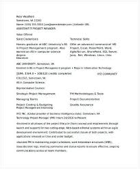 Assistant It Project Manager Resume It Operations Manager Resume