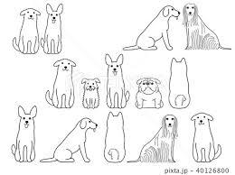 かわいい犬のボーダーセット1 線画のイラスト素材 40126800 Pixta