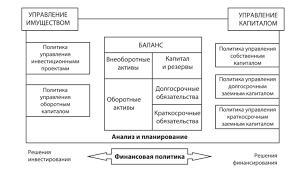 Финансовая политика организации Структура финансовой политики • управление капиталом и резервами как формированием так и использованием отдельных их элементов