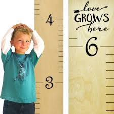 Baby Height Wall Chart Growth Chart Art Hanging Wooden Height Growth Chart To