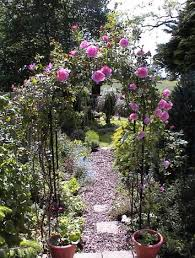 Small Picture 34 best in my rose garden images on Pinterest Garden roses