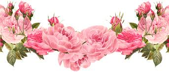 Image result for xmas rose border