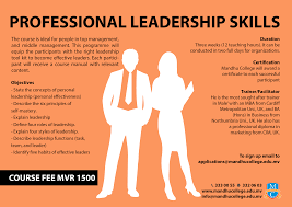 professional leadership skills