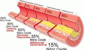 Hasil carian imej untuk plak kolesterol