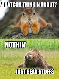 squirrel-meme5.jpg via Relatably.com