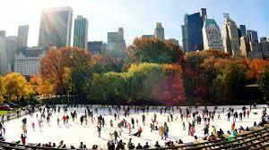New York im November erleben ...