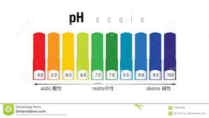 Ph Scale Color Chart The Ph Color Scale Stock Illustration Illustration Of