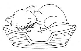 Small Picture Kittens Coloring Pages Best Cute Kitten Coloring Sheets Coloring