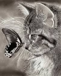 Cool Animal Drawing At Getdrawings Com Free For Personal