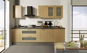 Painting Kitchen Cabinet Doors Kitchen Colorful Kitchen Cabinets Plus Regard To Color Ideas For