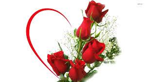 Wallpaper Love Rose Flower Images Free ...