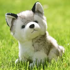 husky puppy stuffed lifelike husky plush toy husky stuffed
