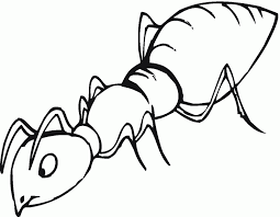 Small Picture Coloring Pages Free Printable Ant Coloring Pages For Kids Ant Man