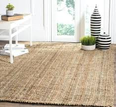 pottery barn sisal rug. 2x3 Sisal Rug Pottery Barn Luxury Furniture Rugs Carpet Ideas Rugrats All Grown Up