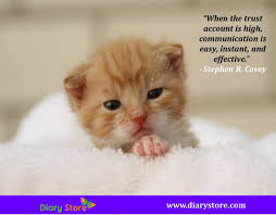 Cat Stock Quote Adorable Communication Quotes Inspirational Communication Quotations