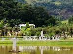 imagem de Pedra Dourada Minas Gerais n-7