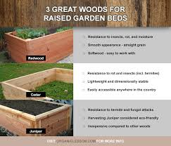 best wood for raised garden beds. Raised Garden Bed Wood Type Best And Lumber For Building Beds Sedl Cansko